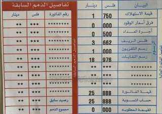 بعد استخدامها الطاقة الشمسية.. فاتورة كهرباء بقيمة «صفر» لسفارة لبنان في الأردن