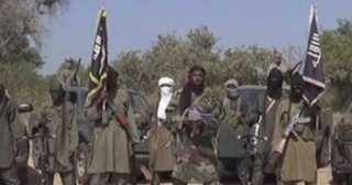 """16 قتيلا على الأقل وإصابة 8 في هجوم لـ""""بوكو حرام"""" شمال الكاميرون"""